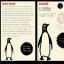 Teatro: PinguíSOS – Lucecús Teatro